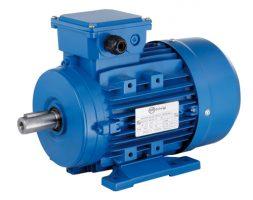 Motor trifasico 0,33 HP 1000 rpm Motorarg